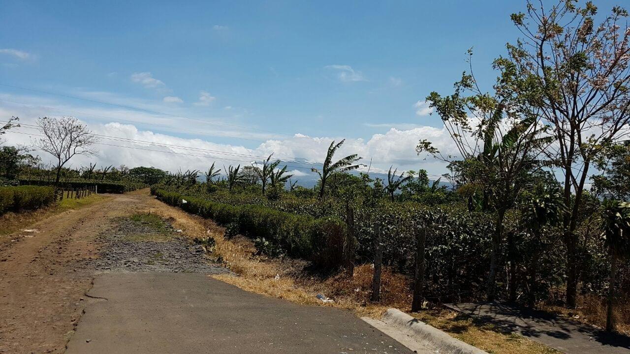 Land for development in San Pablo, Heredia
